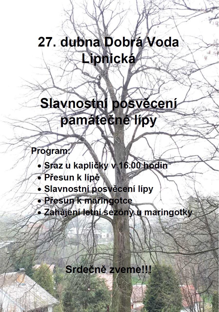 Slavnostní svěcení památného stromu